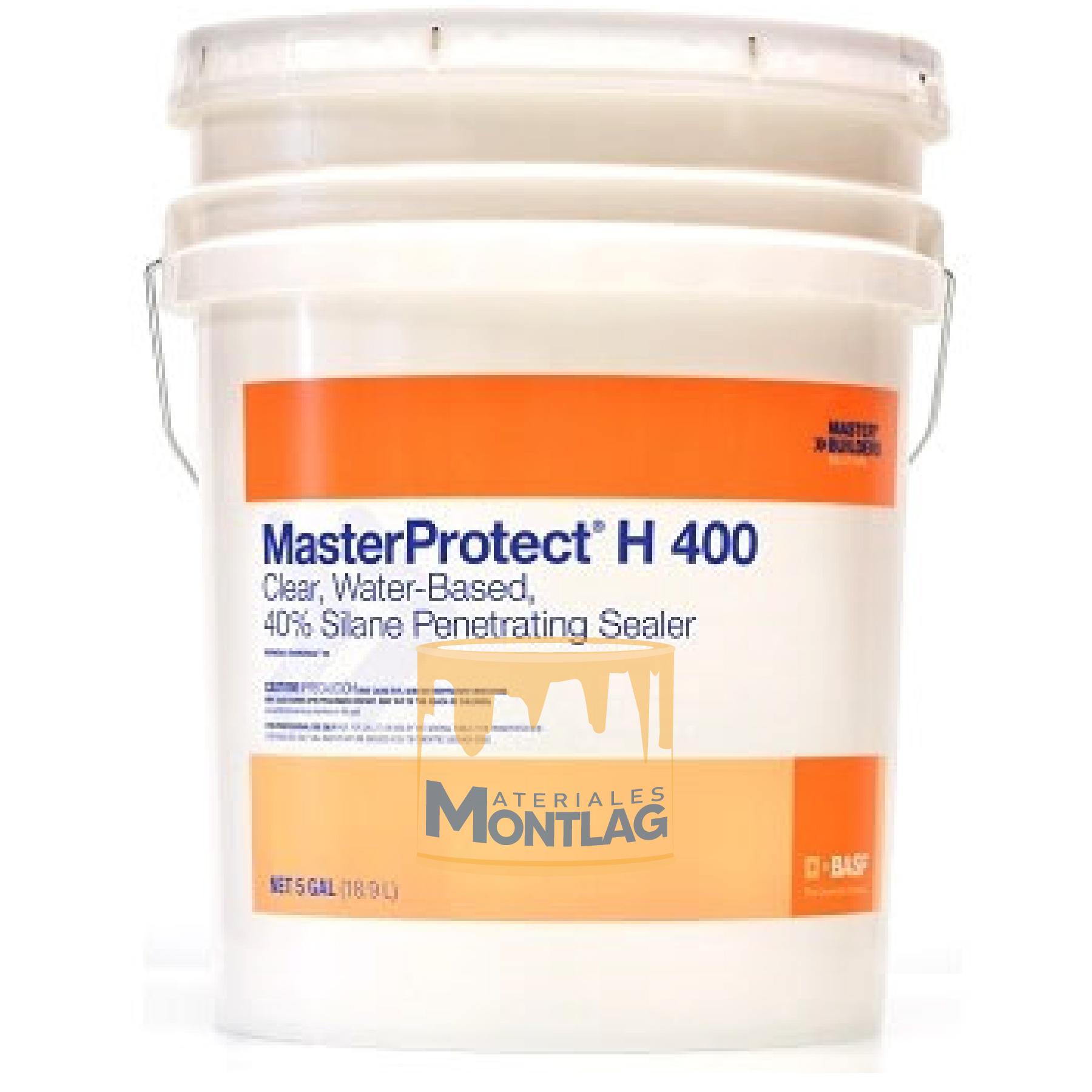 MasterProtect H 400 5 Gal